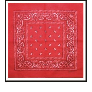 Bandana - Paisley Red