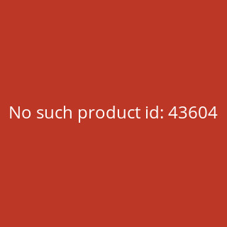 Rusty Pistons Jeans Hose - Winslow Red