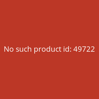 King Kerosin Vintage T-Shirt - Booze & Tattoos Schwarz