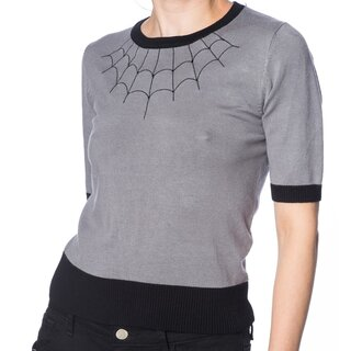 Banned Alternative Pullover - Tarantula Web